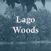 LagoWoods